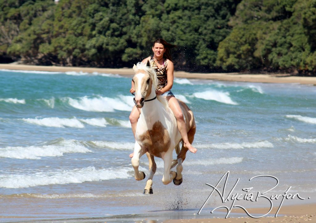 how to ride a horse while galloping
